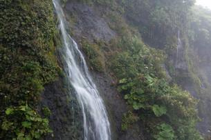 岩肌を流れる小さな滝の写真素材 [FYI01267741]