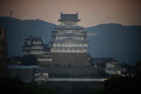 早朝の姫路城の写真素材 [FYI01268016]