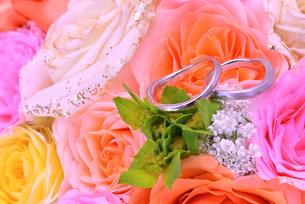 結婚指輪の写真素材 [FYI01268045]