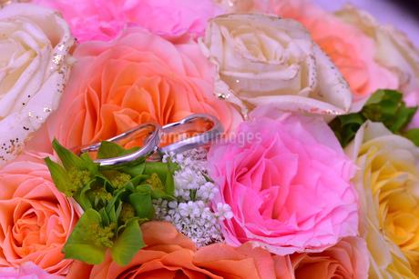 結婚指輪の写真素材 [FYI01268046]
