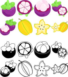 マンゴスチンとスターフルーツの可愛いアイコンのイラスト素材 [FYI01268087]