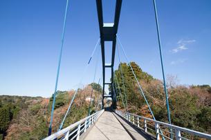 秋の養老渓谷の渓谷橋の風景の写真素材 [FYI01268157]