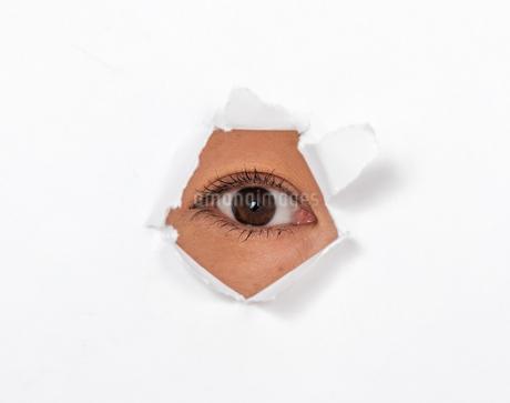 目の写真素材 [FYI01268189]