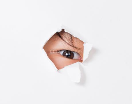 目の写真素材 [FYI01268192]