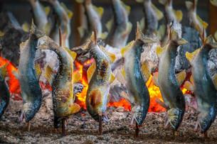 観光やなの炭火で塩焼きにされるおいしそうな鮎のイラスト素材 [FYI01268315]
