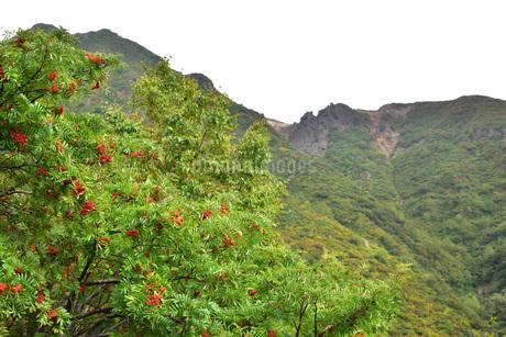 秋の那須連山の写真素材 [FYI01268338]