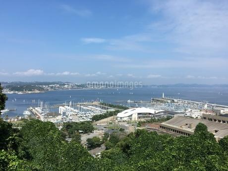 鎌倉の街並み 夢の島の写真素材 [FYI01268470]