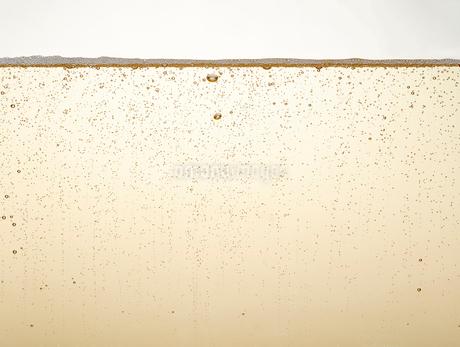 シャンパンの泡の写真素材 [FYI01268575]