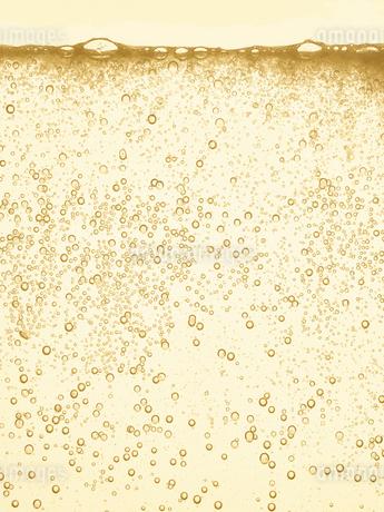 シャンパンの泡の写真素材 [FYI01268608]