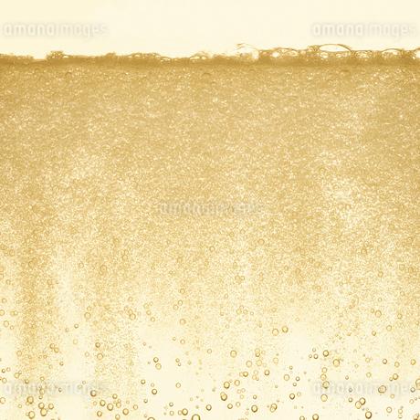 シャンパンの泡の写真素材 [FYI01268609]