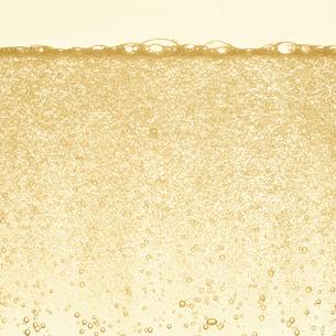 シャンパンの泡の写真素材 [FYI01268610]