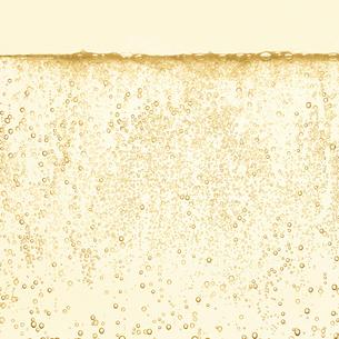 シャンパンの泡の写真素材 [FYI01268612]