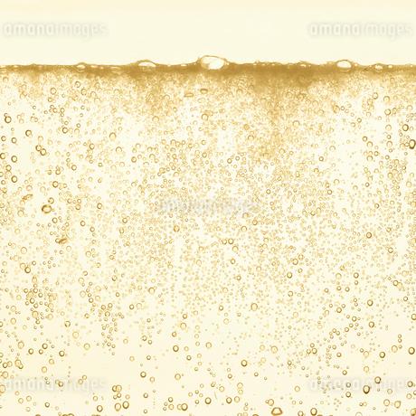 シャンパンの泡の写真素材 [FYI01268613]