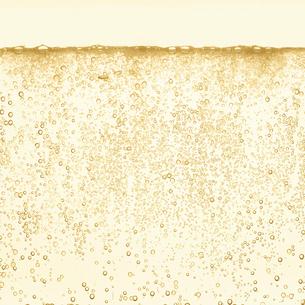 シャンパンの泡の写真素材 [FYI01268614]