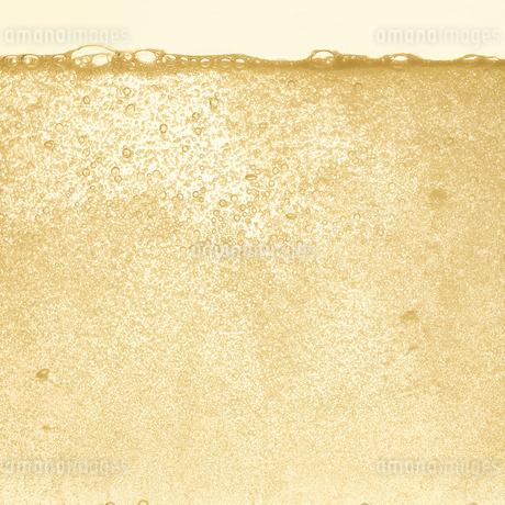 シャンパンの泡の写真素材 [FYI01268616]