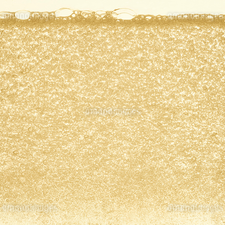 シャンパンの泡の写真素材 [FYI01268620]