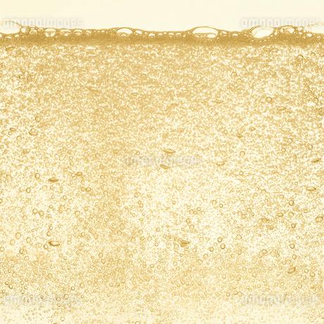 シャンパンの泡の写真素材 [FYI01268621]