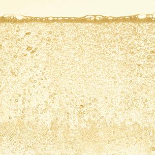 シャンパンの泡の写真素材 [FYI01268622]
