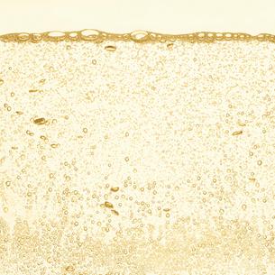 シャンパンの泡の写真素材 [FYI01268624]
