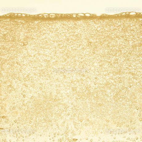 シャンパンの泡の写真素材 [FYI01268626]