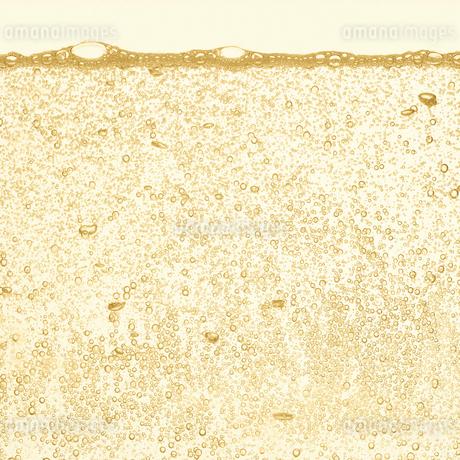 シャンパンの泡の写真素材 [FYI01268628]