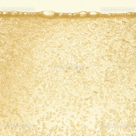 シャンパンの泡の写真素材 [FYI01268630]