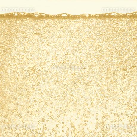シャンパンの泡の写真素材 [FYI01268631]