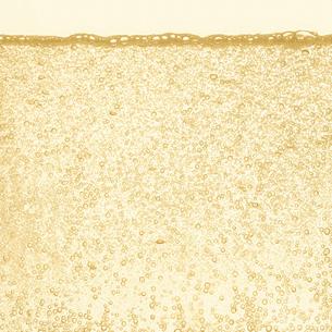 シャンパンの泡の写真素材 [FYI01268632]