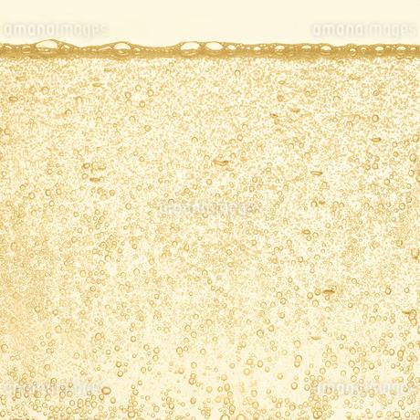 シャンパンの泡の写真素材 [FYI01268633]
