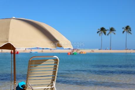 ハワイ ワイキキビーチの椰子の木とパラソルの写真素材 [FYI01268781]