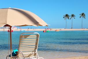 ハワイ ワイキキビーチの椰子の木とパラソルの写真素材 [FYI01268784]