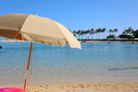 ハワイ ワイキキビーチの椰子の木とパラソルの写真素材 [FYI01268786]