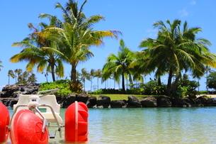 ハワイのオアフ島のワイキキビーチ 浅瀬の遊具とヤシの木の写真素材 [FYI01268826]