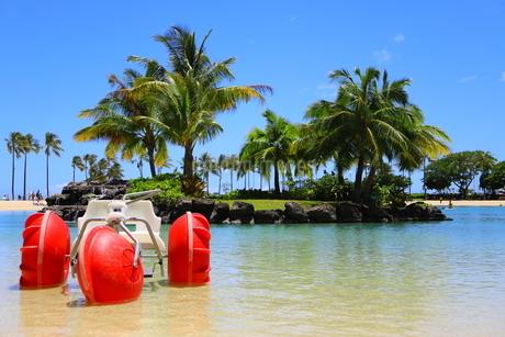 ハワイのオアフ島のワイキキビーチ 浅瀬の遊具とヤシの木の写真素材 [FYI01268827]