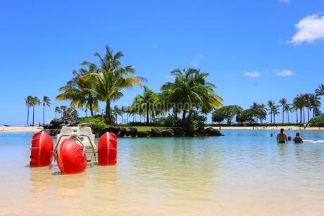 ハワイのオアフ島のワイキキビーチ 浅瀬の遊具とヤシの木の写真素材 [FYI01268828]