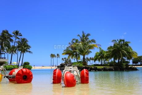 ハワイのオアフ島のワイキキビーチ 浅瀬の遊具とヤシの木の写真素材 [FYI01268829]