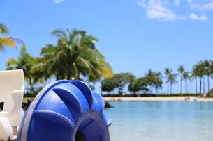 ハワイのオアフ島のワイキキビーチ 浅瀬の遊具とヤシの木の写真素材 [FYI01268833]