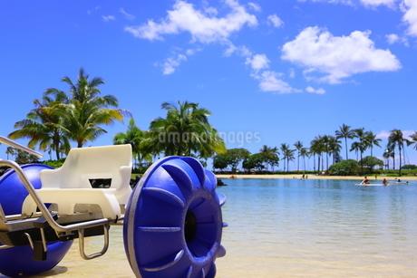 ハワイのオアフ島のワイキキビーチ 浅瀬の遊具とヤシの木の写真素材 [FYI01268837]