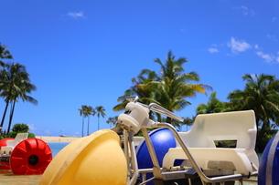 ハワイのオアフ島のワイキキビーチ 浅瀬の遊具とヤシの木の写真素材 [FYI01268838]