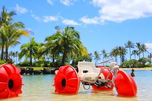 ハワイのオアフ島のワイキキビーチ 浅瀬の遊具とヤシの木の写真素材 [FYI01268840]