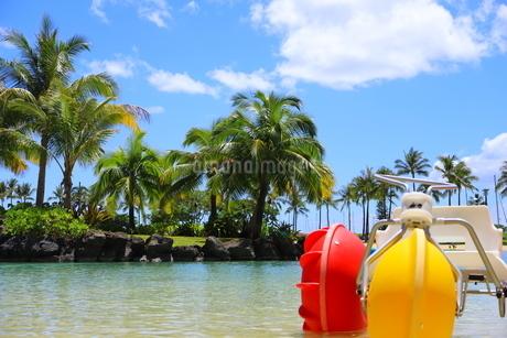 ハワイのオアフ島のワイキキビーチ 浅瀬の遊具とヤシの木の写真素材 [FYI01268842]