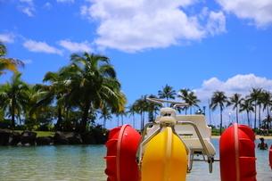 ハワイのオアフ島のワイキキビーチ 浅瀬の遊具とヤシの木の写真素材 [FYI01268843]