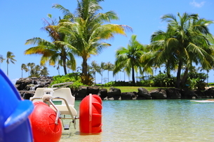 ハワイのオアフ島のワイキキビーチ 浅瀬の遊具とヤシの木の写真素材 [FYI01268848]
