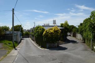 南国沖縄の田舎の分かれ道の写真素材 [FYI01268869]