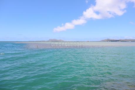 ハワイのオアフ島 ターコイズブルーの海と青空の写真素材 [FYI01268879]