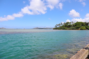 ハワイのオアフ島 ターコイズブルーの海と青空の写真素材 [FYI01268880]