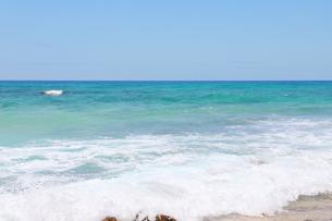 ハワイのオアフ島 エメラルドグリーンの海と砂浜の写真素材 [FYI01268886]