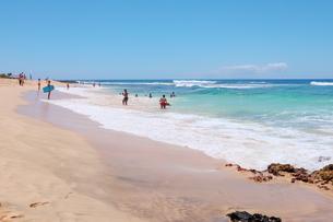 ハワイのオアフ島 エメラルドグリーンの海と砂浜の写真素材 [FYI01268893]