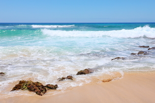 ハワイのオアフ島 エメラルドグリーンの海と砂浜の写真素材 [FYI01268894]