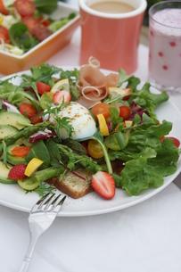 フレッシュ野菜のオープンサンド~温玉のせの写真素材 [FYI01269008]